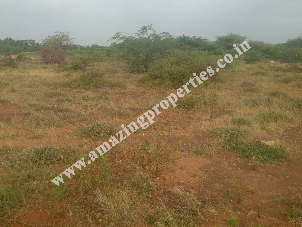 land-for-sale-near-reddiyarpatti-hills-1