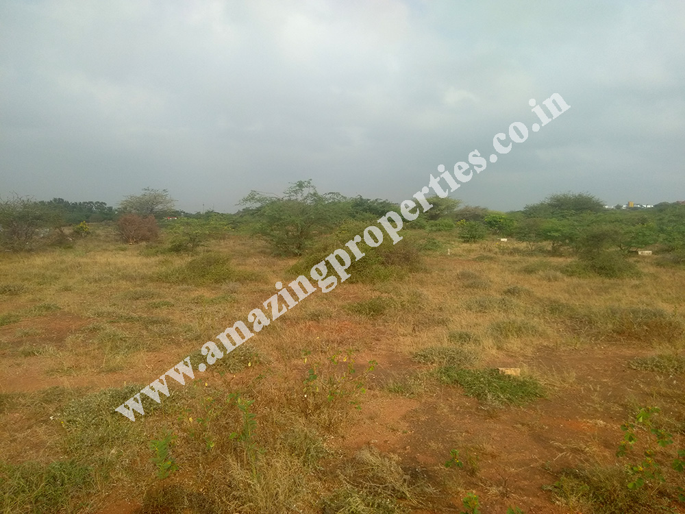 land-for-sale-near-reddiyarpatti-hills-2