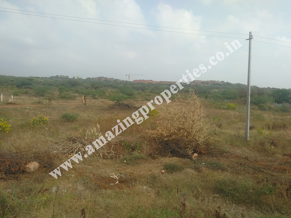 land-for-sale-near-reddiyarpatti-hills-3