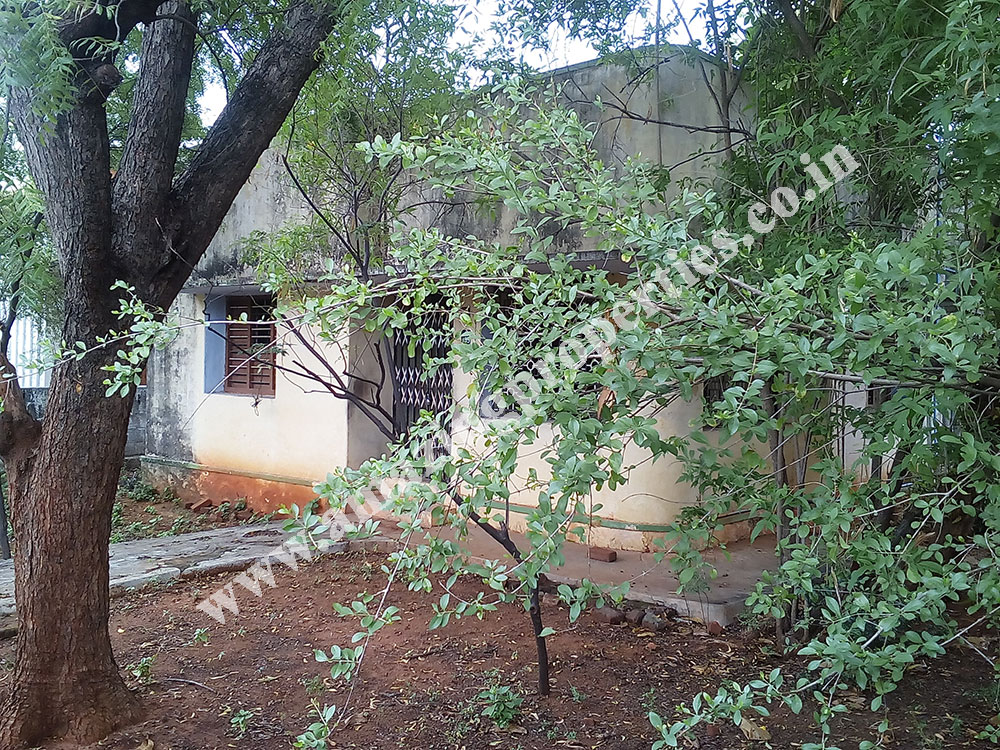 land-for-sale-in-ngo-a-colony-tirunelveli-2