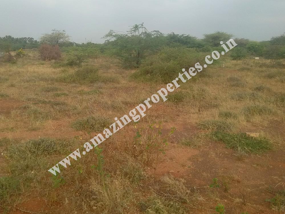 land-for-sale-near-reddiyarpatti-hills-1